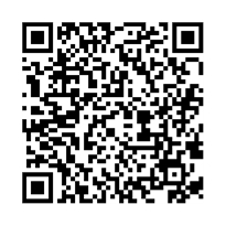 QR link for The Crack in the Bomb : A Novel